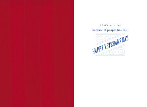 Flag Silhouette Salute Veterans Day Card,