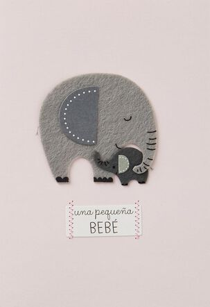 Una Linda Familia Spanish Language New Baby Girl Card