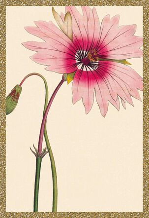 Pink Flower Blank Thinking of You Card