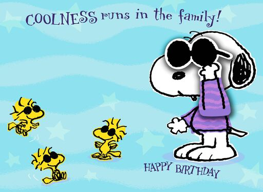 Peanuts® You're So Great Birthday Card for Nephew,