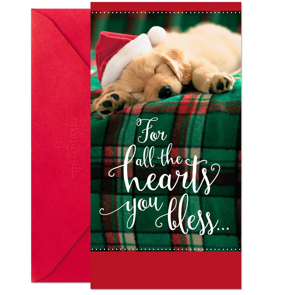 Santa Puppy Money Holder Christmas Cards, Pack of 10 - Boxed Cards ...