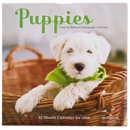 Adorable Puppies 2018 Wall Calendar, 12-Month, , large