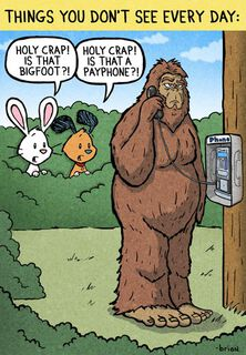 Chuck and Beans Payphone Funny Birthday Card,