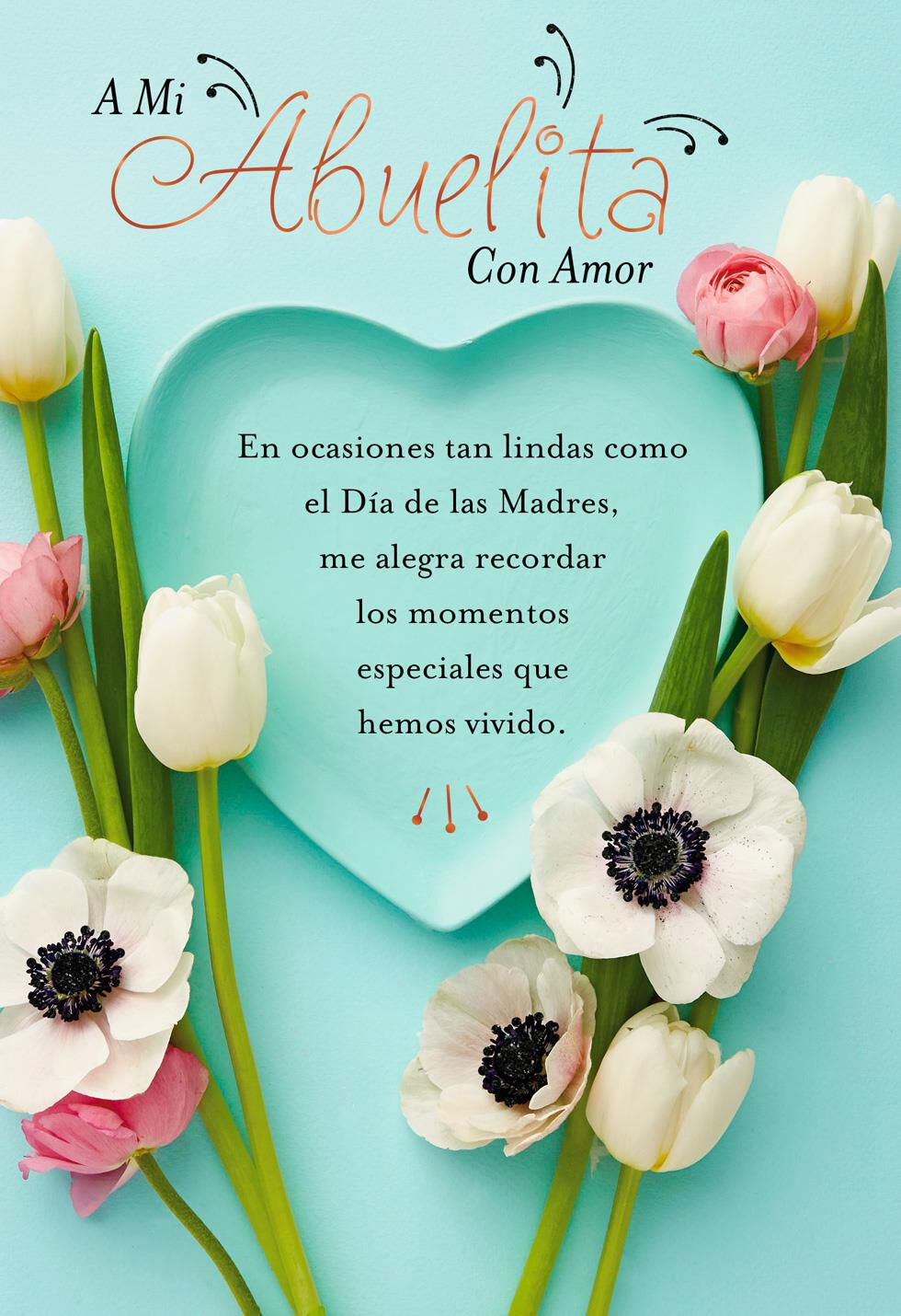 Special place in my heart spanish language mothers day card for special place in my heart spanish language mothers day card for grandmother greeting cards hallmark izmirmasajfo