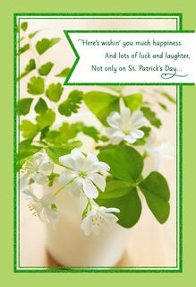 Shamrock Plant St. Patrick's Day Card,
