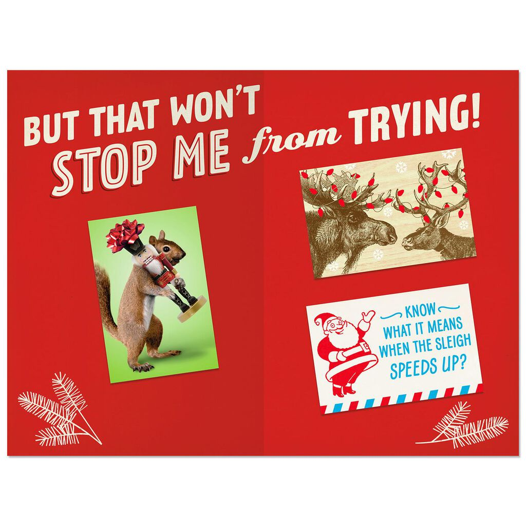 All the Cards You Deserve Funny Christmas Card - Greeting Cards ...
