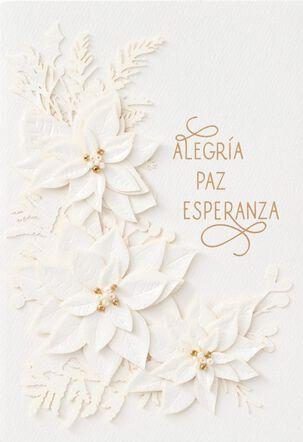 Alegría, Paz, Esperanza Spanish-Language Christmas Card