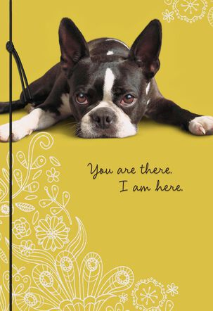 You Are There Sad Puppy Miss You Card