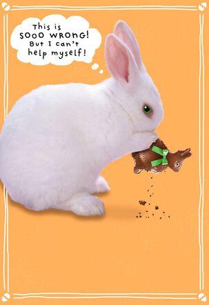 Chocolate Bunny Binge Funny Easter Card