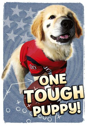 One Tough Puppy Birthday Card