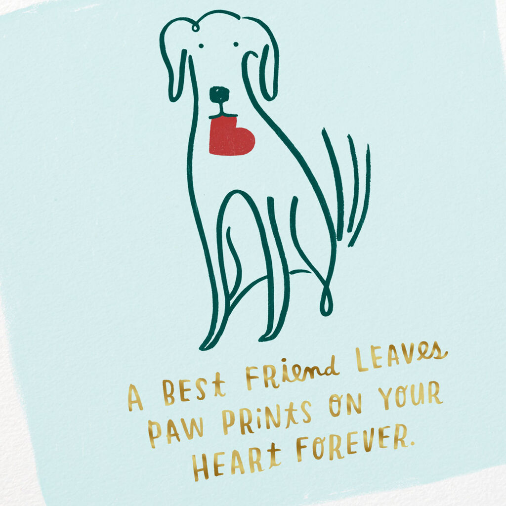 Loss Of Pet >> Dog Carrying A Heart Sympathy Card For Loss Of Pet