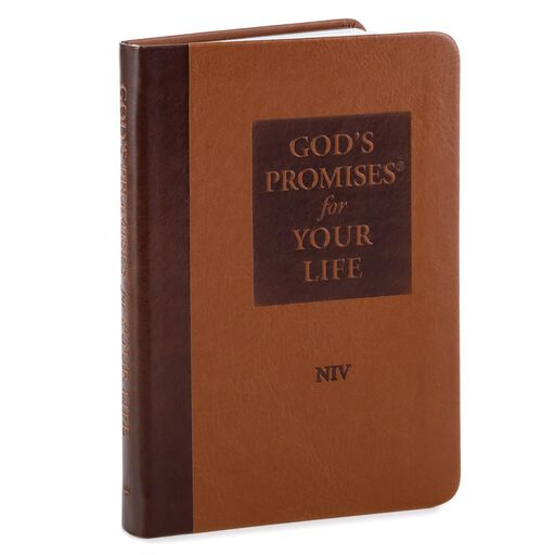 Gods Promises For Your Life Gift Book