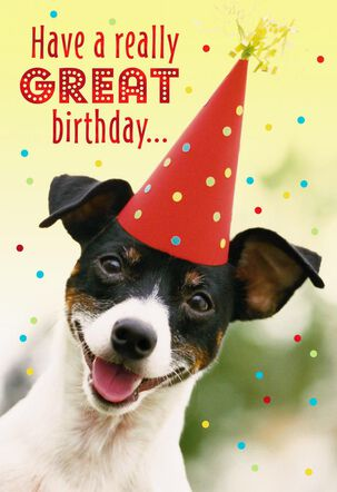 Dog With Party Hat Birthday Card