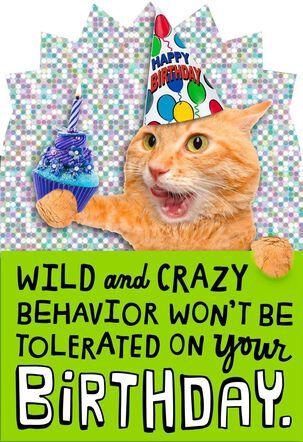 Wild and Crazy Birthday Cat