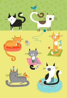 Cat Party Blank Card,
