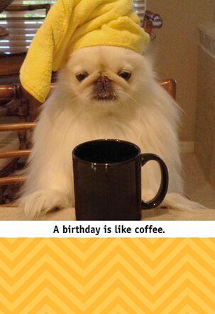 Coffee Loving Puppy Funny Birthday Card