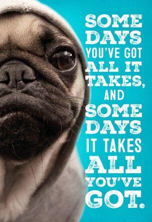 Bulldog in Hoodie Encouragement Card