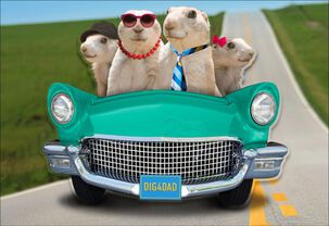 Cute Prairie Dogs Funny Father's Day Card