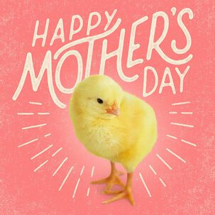 One Amazing Chick Musical Mother's Day Card