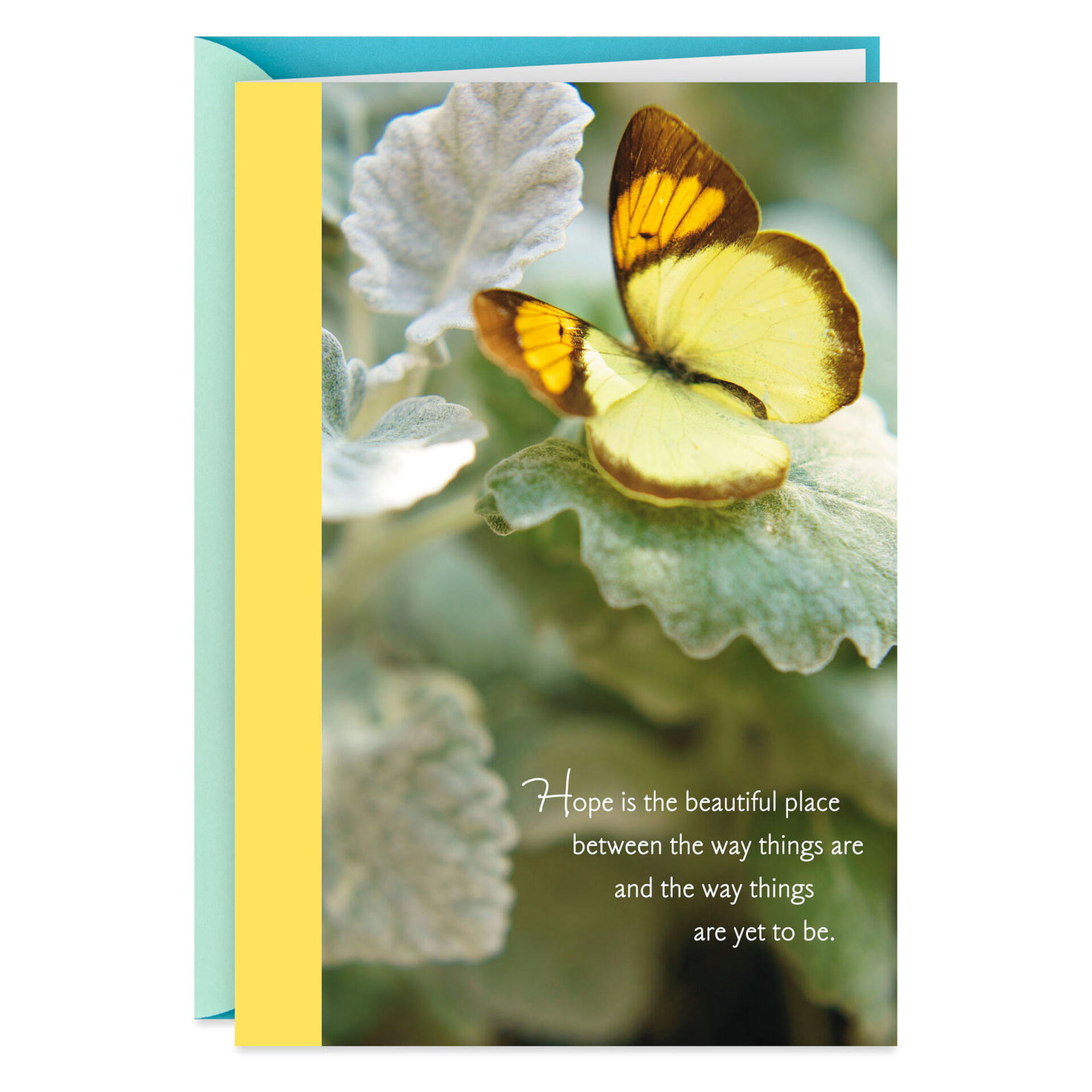 butterfly card encouragement card thinking of you card