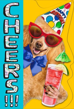 Cheers!!! Party Poodle Birthday Card