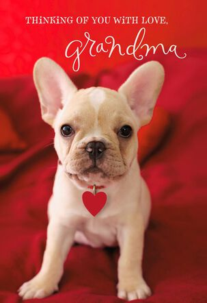 Cute Puppy Thinking of Grandma Valentine's Day Card