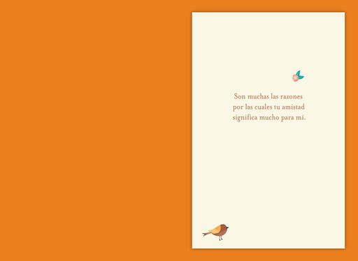 For Many Beautiful Reasons Spanish-Language Friendship Card,