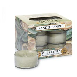 Sage & Citrus Tea Light Candles, Set of 12 by Yankee Candle®, , large