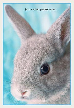 Cute Bunny Face Easter Card