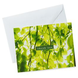 Green Leaves Thank You Notes, Pack of 10, , large