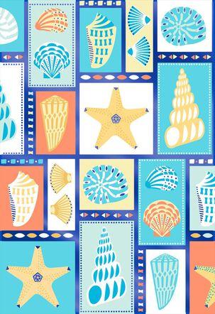Illustrated Seashells Blank Card