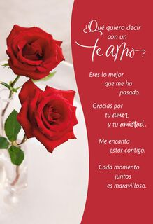 Wonderful Moments Spanish Valentine's Day Card,
