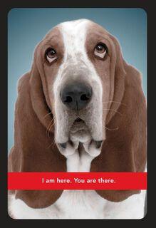 Basset Hound Miss You Card,