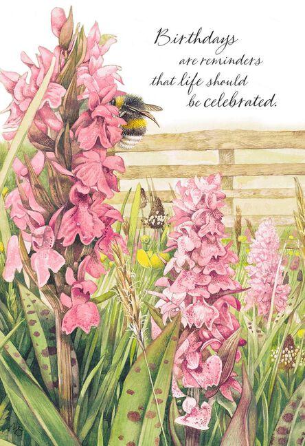 Marjolein Bastin Snapdragon Flowers Birthday Card Greeting Cards