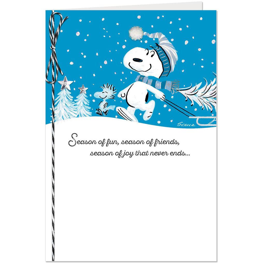 Peanuts® Snoopy Season of Fun 9b1ae53d70d33
