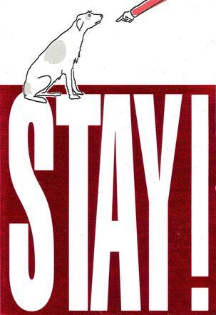 STAY! Goodbye Card