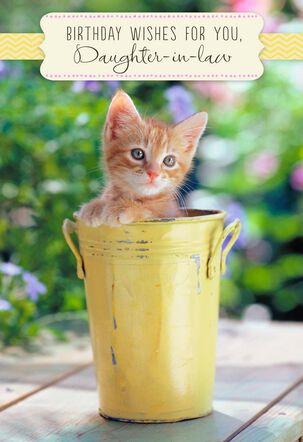 Kitten in Bucket Birthday Card for Daughter-in-Law