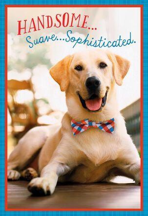 Handsome, Suave, Sophisticated Birthday Card