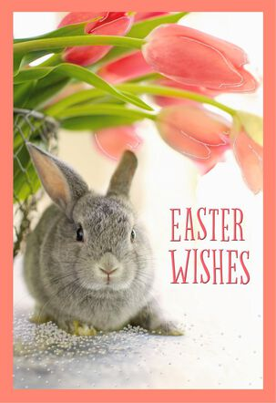 Little Gray Bunny With Tulip Basket Easter Card