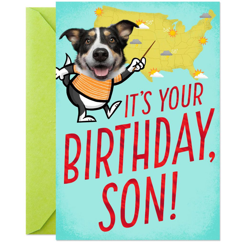 Weather Dog Chance Of Hugs Pop Up Birthday Card