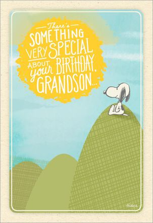 Peanuts® Snoopy A Special Grandson Birthday Card
