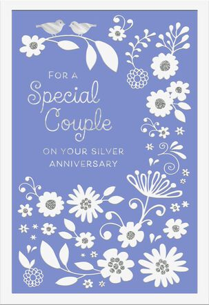 For a Special Couple 25th Anniversary Card