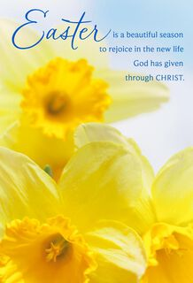 Yellow Daffodils Religious Easter Cards, Pack of 6,