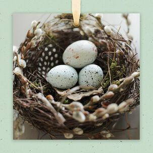 Speckled Eggs in Nest Blank Card