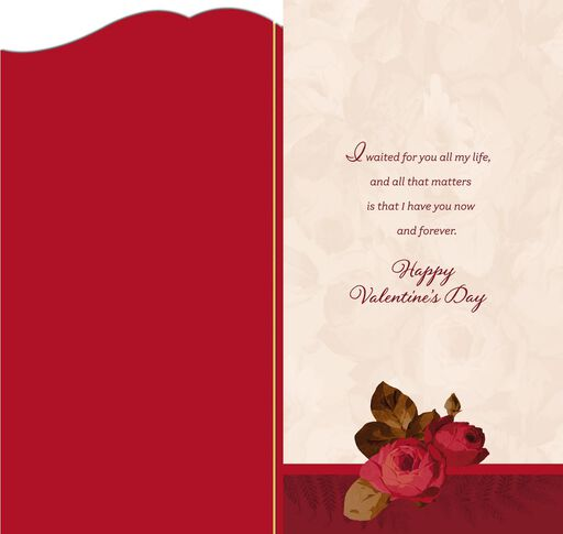 romantic hearts and roses valentines day card
