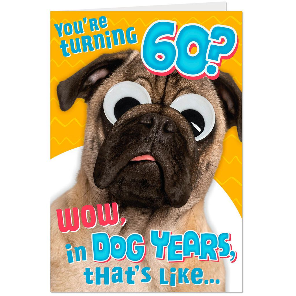 Funny Dog Years 60th Birthday Card