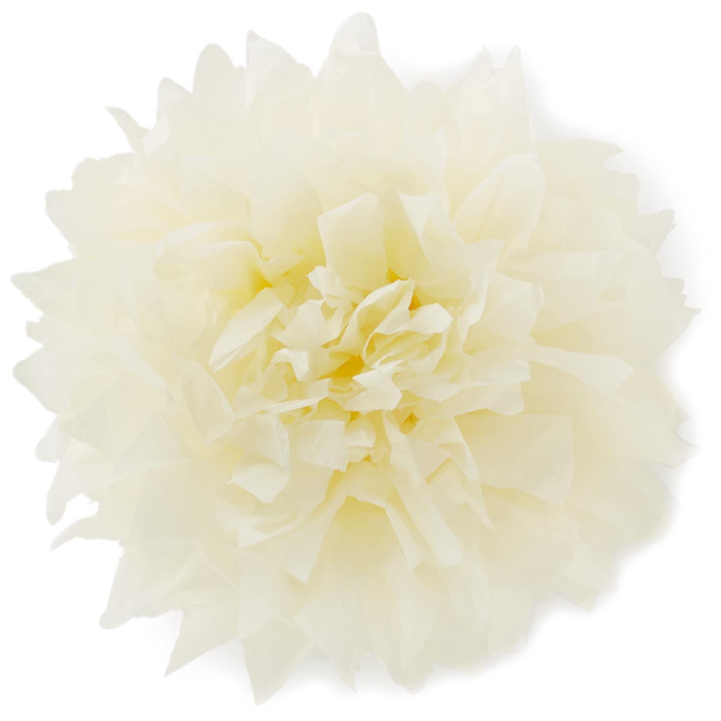 Cream Tissue Paper Flower Pom Pom Gift Bow 5 Bows Ribbons