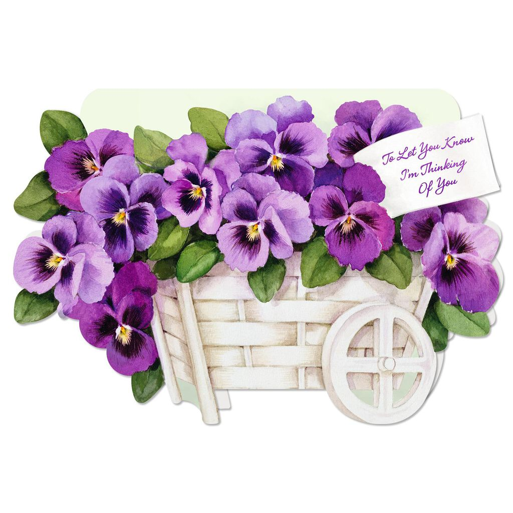 Pansy Thinking Of You Card Greeting Cards Hallmark