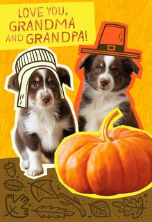 Pilgrim Puppies Thanksgiving Card for Grandparents,
