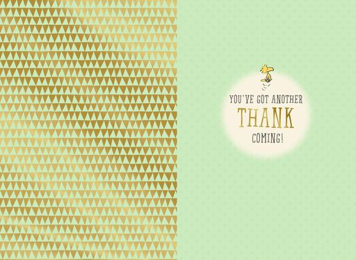 Peanuts® Administrative Professionals Day Thank You Card,